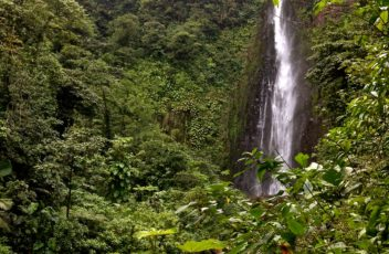 Beautiful Guadeloupe waterfall